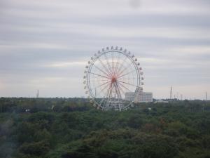 Hitachi Seaside Park 2