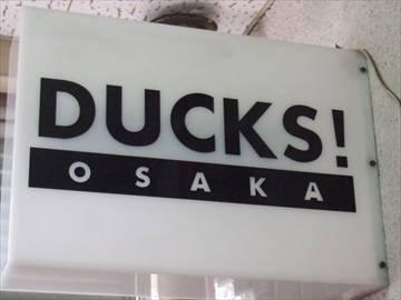 Ducks.jpeg
